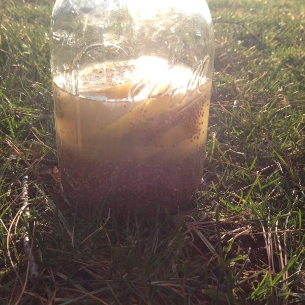Hydrating Lemon Ginger Beverage with Chia Seeds